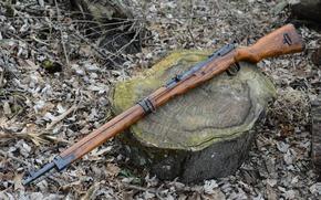 Картинка винтовка, японская, Тип 99, магазинная, Arisaka