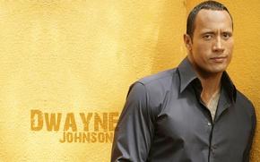 Обои Dwayne Johnson, рестлер, Скала, актер, Дуэйн Джонсон