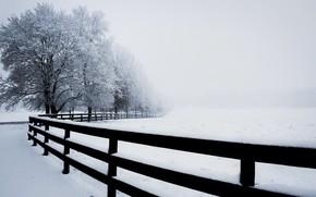 Картинка зима, туман, забор