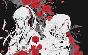 Картинка розы, арт, парни, D.Gray-man