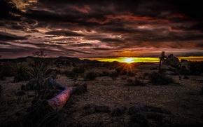 Картинка облака, закат, пустыня, Калифорния, зарево, США, Национальный парк Джошуа-Три
