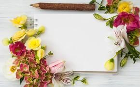 Картинка цветы, wood, flowers, beautiful, композиция, frame, floral