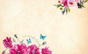 Картинка бабочки, цветы, Фон, Текстура