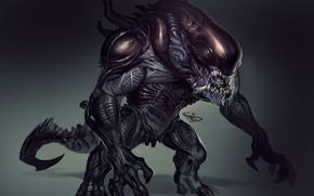 Картинка Чужой, пришелец, alien, xenomorph