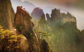 Обои деревья, горы, природа, скалы, Китай, сосны, доломиты