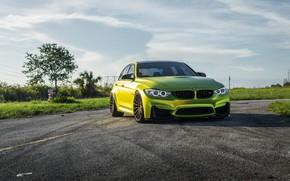 Картинка BMW, Yellow, F80, Sight, LED