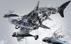 Картинка рыбки, брызги, металл, детали, акула молот