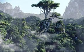 Картинка деревья, горы, Forest