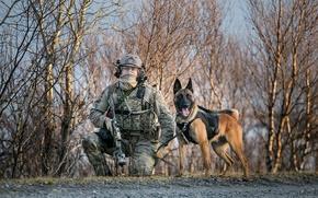 Обои солдат, собака, армия, оружие