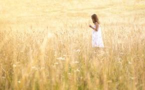 Картинка поле, лето, свет, девочка