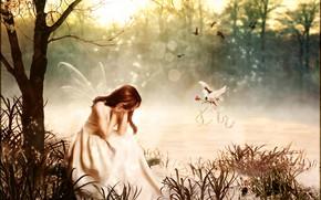 Картинка роза, голубь, Digital Art, brandrificus, breakdown, волшебная фея
