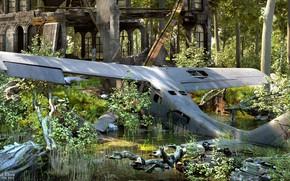 Картинка лес, растительность, строение, аппарат, CRASH SITE