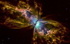 Картинка Nebula, NGC 6302, Butterfly