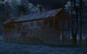 Картинка лес, ночь, дом, труба, Scary house