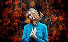 Картинка девушка, настроение, свитер, боке, акация, мимоза, Ronny Garcia