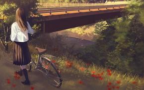 Картинка девушка, мост, природа