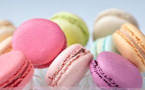 Картинка colorful, десерт, сладкое, sweet, dessert, cookies, macaron, almond, макаруны