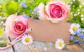 Картинка розы, лепестки, pink, flowers, romantic, roses