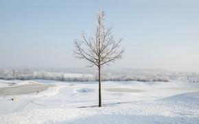 Картинка Aschheim, Golf Course, Golfplatz