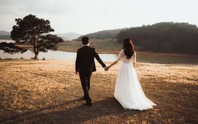 Картинка природа, дерево, костюм, невеста, белое платье, свадьба, жених