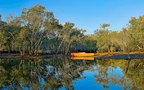 Картинка лес, небо, вода, солнце, деревья, парк, отражение, река, обработка, лодки, Австралия, Brooklyn, Hawkesbury River