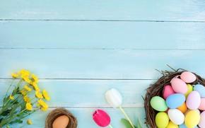 Картинка Тюльпаны, Пасха, Яйца, Праздник, Хризантемы