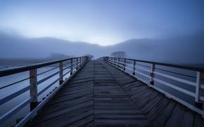 Обои мост, туман, озеро, утро