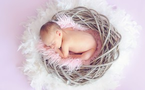Картинка сон, гнездо, спит, девочка, мех, малышка