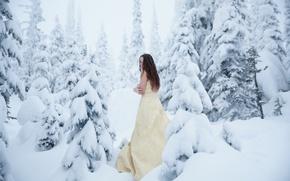 Обои лес, девушка, снег, мороз, холодно, Lichon, Cold Winter