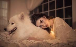 Обои собака, взгляд, самоед, улыбка, девушка, настроение, дружба, друзья, азиатка