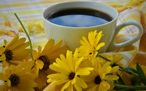Картинка цветы, кофе, чашка, натюрморт