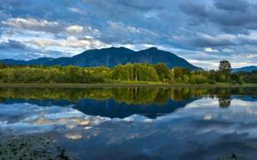 Картинка лес, горы, озеро, отражение, Washington, штат Вашингтон, King County, Округ Кинг