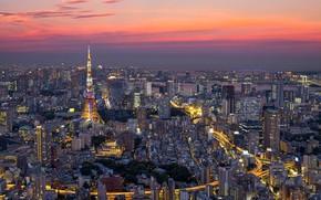 Картинка облака, башня, дома, Япония, Токио, панорама, зарево