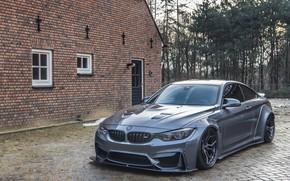 Картинка BMW, Liberty, Walk, M4