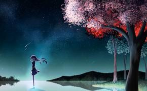 Картинка ночь, весна, девочка