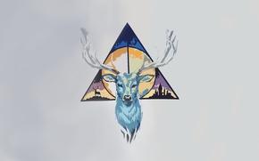 Картинка минимализм, олень, треугольник, гарри поттер, дары смерти
