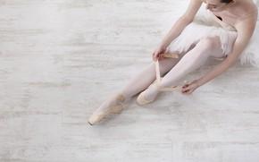 Картинка legs, dancer, ballet