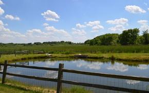 Картинка Природа, Пруд, Поля, Nature, Pond, Fields