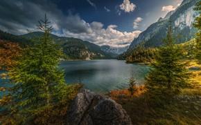 Обои деревья, горы, ель, озеро, облака