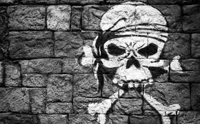Обои кости, рисунок, стена, череп