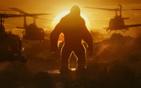 Обои cinema, army, movie, gorilla, film, strong, Kong: Skull Island, Skull Island, King Kong: