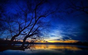 Картинка небо, облака, озеро, дерево, зарево