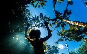 Картинка небо, лето, девушка, вода, море, океан, свет, пальмы, цветы
