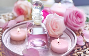 Обои свечи, лепестки, rose, wood, pink, petals, розовые розы, spa, oil