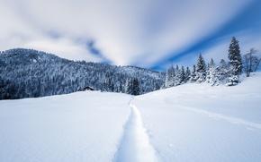 Картинка зима, лес, снег, горы, дом, тропа