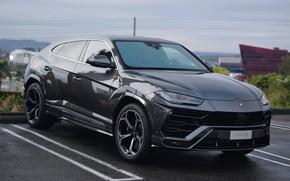 Картинка Lamborghini, Gray, Parking, Urus