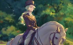 Картинка девушка, лошадь, аниме, арт, Академия ведьмочек, Little Witch Academia