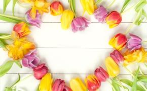 Картинка цветы, букет, весна, colorful, тюльпаны, fresh, wood, flowers, beautiful, tulips, spring, bright