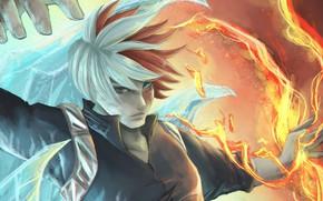 Картинка взгляд, огонь, лёд, аниме, арт, парень, Boku no Hero Academia, Шото, Моя геройская акадеимя, Todoroki …