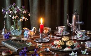 Обои подснежники, очки, свеча, книга, кофе, кексы, ирисы, букет, стиль, кофейник, сервиз, цветы